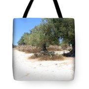 Olive Trees In Samaria Tote Bag