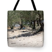 Olive Trees In Sebastia Nablus Tote Bag