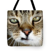Oliver The Cat Tote Bag