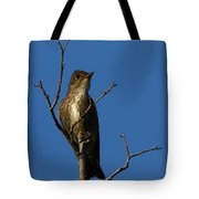 Olivesided Flycatcher Tote Bag