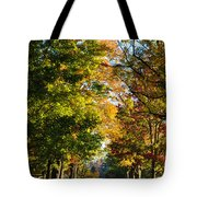 On A Country Road Tote Bag