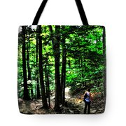 On Our Way Chasing The Eternal Flame At Chestnut Ridge Park Tote Bag