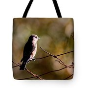 On The Arbor Tote Bag