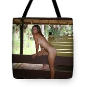 On The Fence 843 Tote Bag