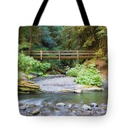 On The Trail To Marymere Tote Bag