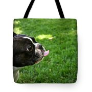 ...on You Tote Bag