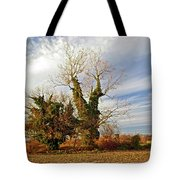 Once Was Home Tote Bag
