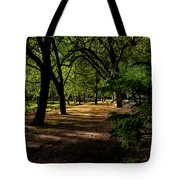 One Day In The City Park Tote Bag