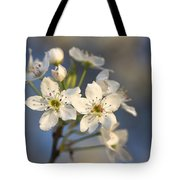One Fine Morning In Bradford Pear Blossoms Tote Bag