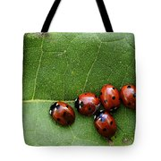 One Lady Bug Voted Off The Island Tote Bag