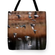 One Last Swallow Tote Bag