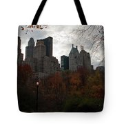 One Light On In Central Park Tote Bag