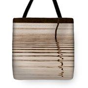 One Miss Stake Tote Bag