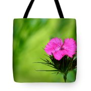One Of The Phlox Tote Bag