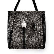 One Of These Things  Tote Bag