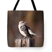 One On A 4x4 Tote Bag