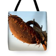 One Sunflower Head Wilted Tote Bag