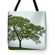 One Tree Hill. Tote Bag