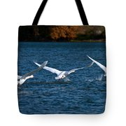 One Two Three Go Tote Bag