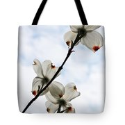 Only Once A Year Tote Bag