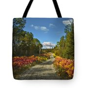 Ontario Backroad Tote Bag