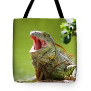 Open Mouth Iguana Tote Bag
