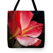 Open Rose After The Rain Tote Bag