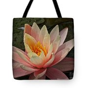Open To Possibilities Tote Bag