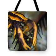 Orange And Brown Elegant Squat Lobster Tote Bag