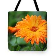 Orange And Green II Tote Bag