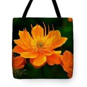 Orange And Yellow Tote Bag