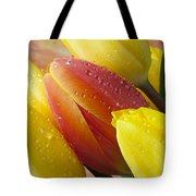 Orange And Yellow Tulips Tote Bag