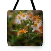 Orange Brilliance Tote Bag