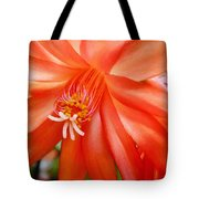 Orange Cactus Tote Bag