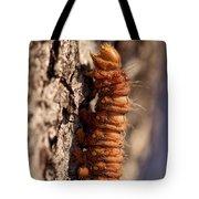 Orange Caterpillar Tote Bag