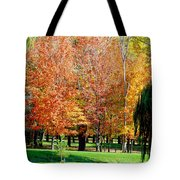 Orange Colored Trees Tote Bag