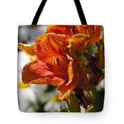Orange Day Lilies In The Sun Tote Bag
