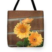 Orange Delight Tote Bag