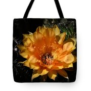 Orange Echinopsis Flower  Tote Bag