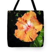 Orange Hibiscus After The Rain 1 Tote Bag