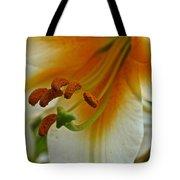 Orange Interior Tote Bag