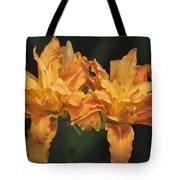 Orange Kwanso Daylily Pair Tote Bag