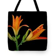 Orange Lily On Black Tote Bag