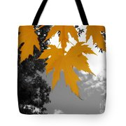 Orange Maple Leaves Tote Bag