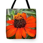 Orange Petals Tote Bag