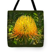 Orange Protea Flower Art Tote Bag by Rebecca Margraf