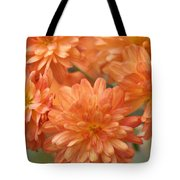 Orange Sherbert Tote Bag