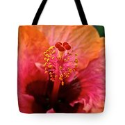 Orange Sherbert Hibiscus Tote Bag