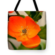 Orange Star   Tote Bag