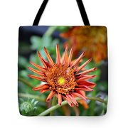 Orange Starburst Tote Bag